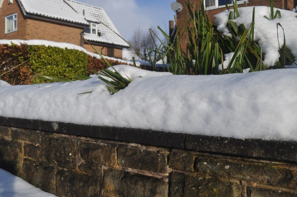 Snowy Sheffield